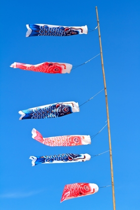 An image of fish kites